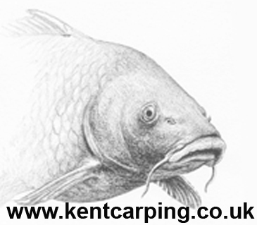 www.KentCarping.co.uk